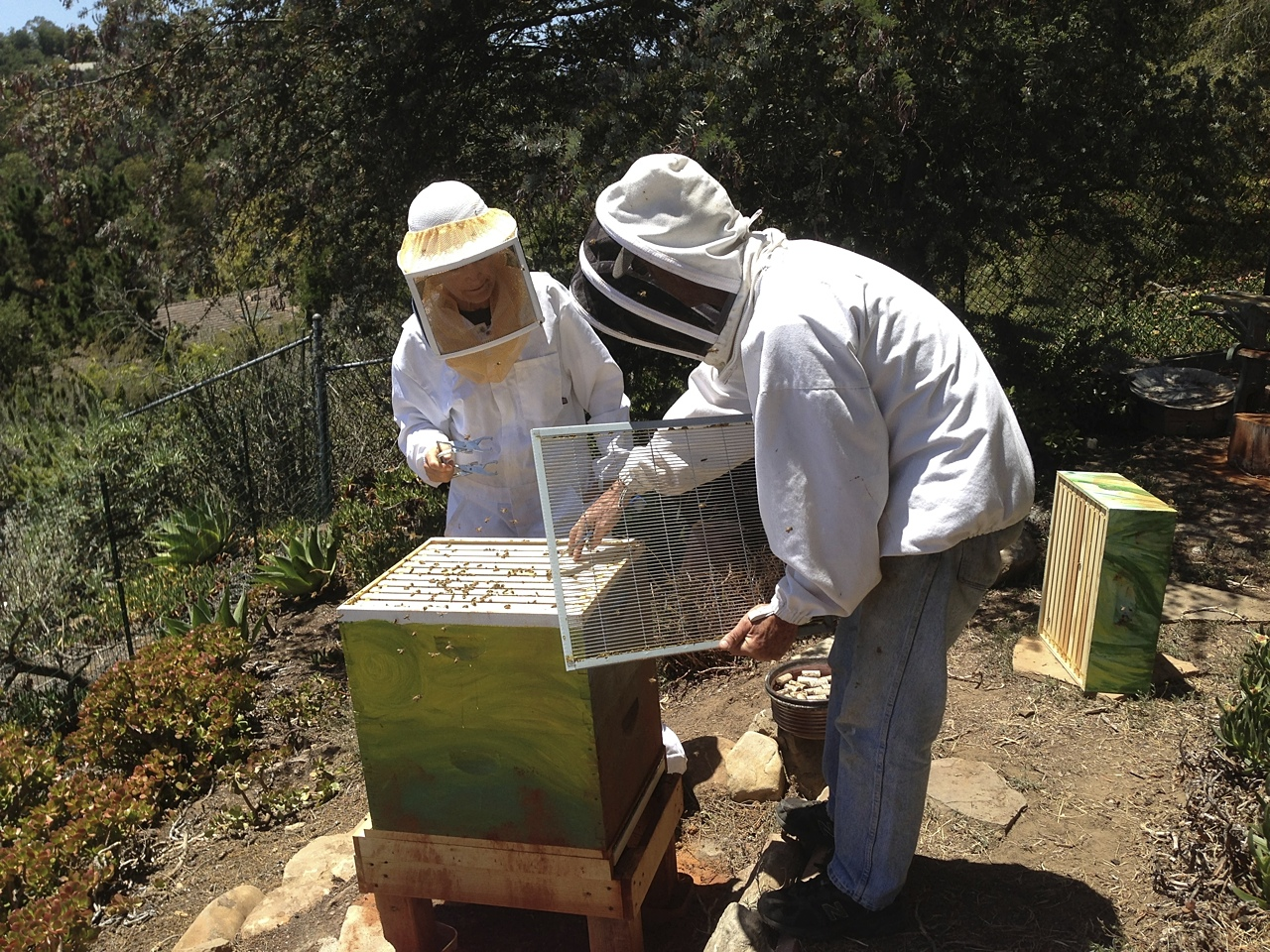 santa_barbara_beekeepers_association_keepers_1