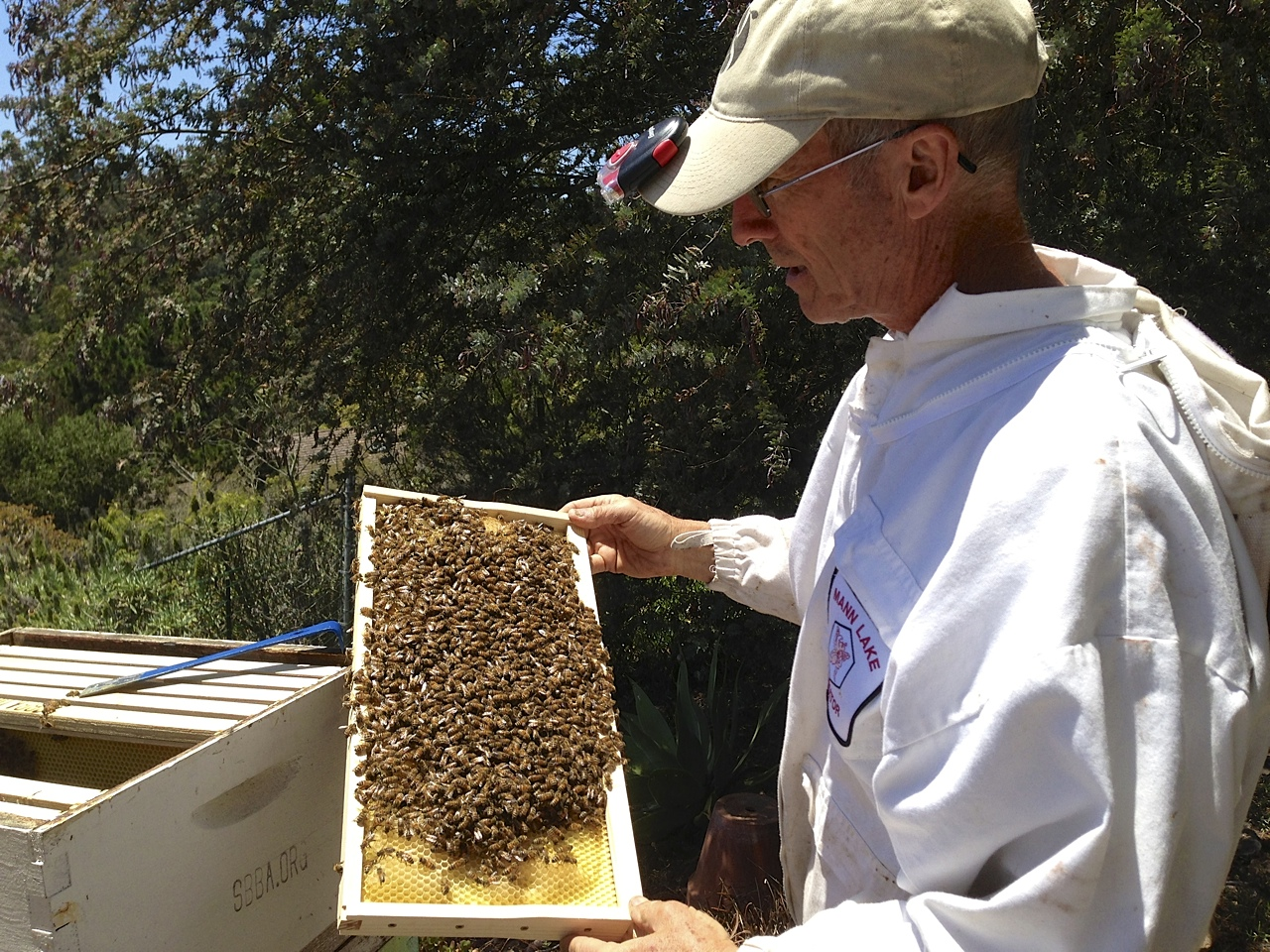 santa_barbara_beekeepers_association_keepers_2
