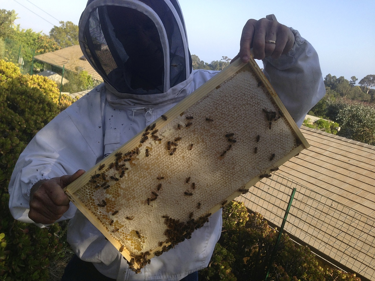 santa_barbara_beekeepers_association_keepers_3